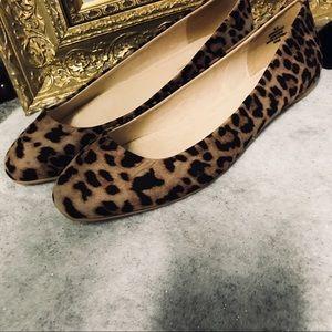 Flash sale! NIB cheetah rounded toe flats size 8.5